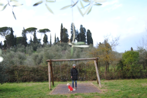 Park in Florence. survivinginitaly.com